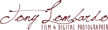 Tony Lombardo